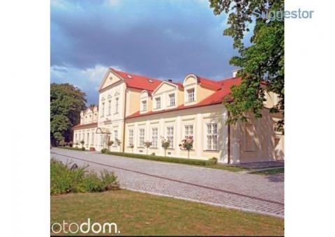Atrakcyjny pałac - Sokolniki