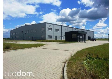 Hala/Magazyn, 3 669 m², Gubin