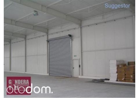 Hala/Magazyn, 1 600 m², Niepruszewo
